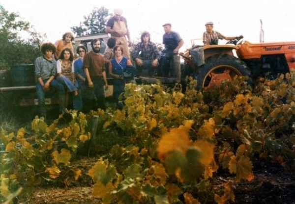 [Exposition] Le vignoble Corcouéen