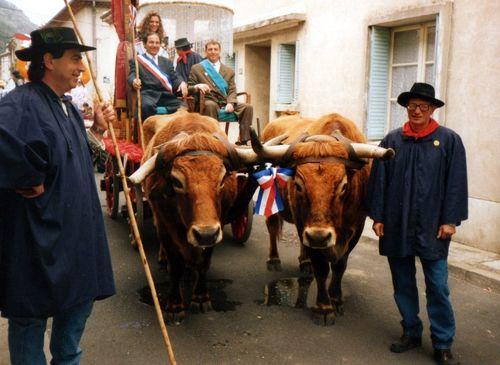 [Fiche d'inventaire] Les fêtes des Bouviers et des Laboureurs de la Drôme