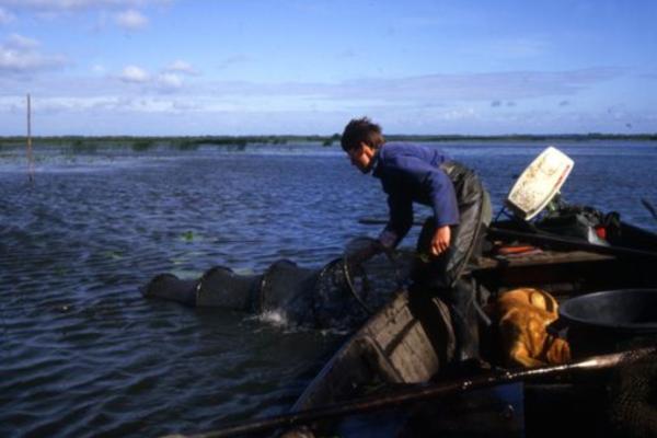 [Fiche d'inventaire] Pratiques et savoir-faire des pêcheurs du lac de Grand-Lieu
