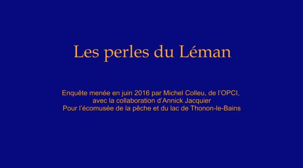 La fabrication des perles du lac Léman (3/3), Thonon-les-Bains, 2017